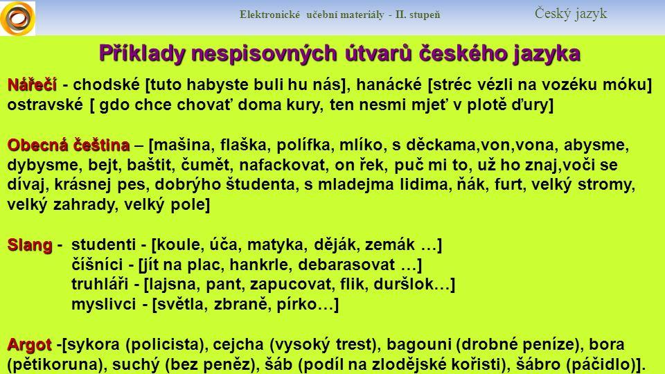 Příklady nespisovných útvarů českého jazyka