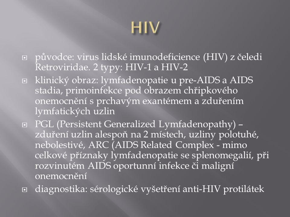 HIV původce: virus lidské imunodeficience (HIV) z čeledi Retroviridae. 2 typy: HIV-1 a HIV-2.