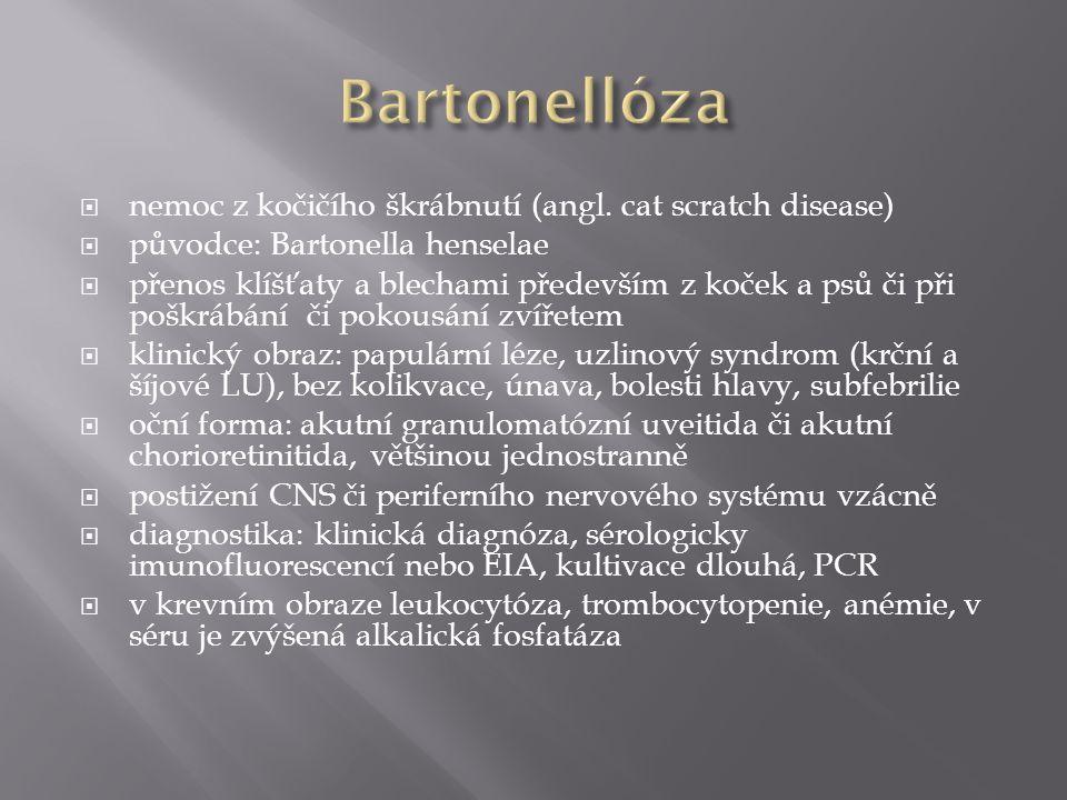 Bartonellóza nemoc z kočičího škrábnutí (angl. cat scratch disease)