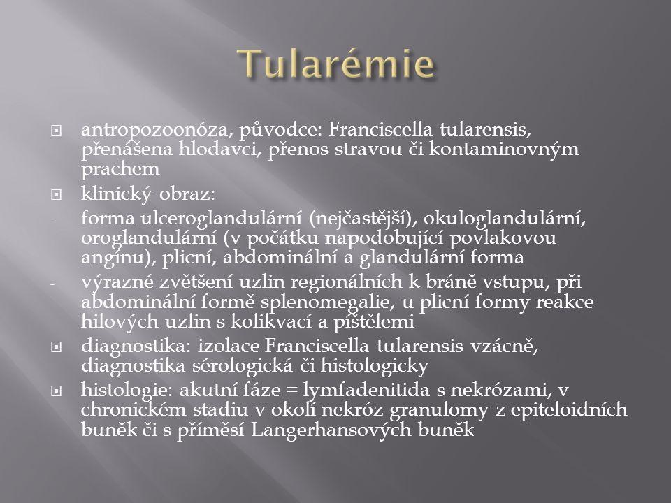 Tularémie antropozoonóza, původce: Franciscella tularensis, přenášena hlodavci, přenos stravou či kontaminovným prachem.