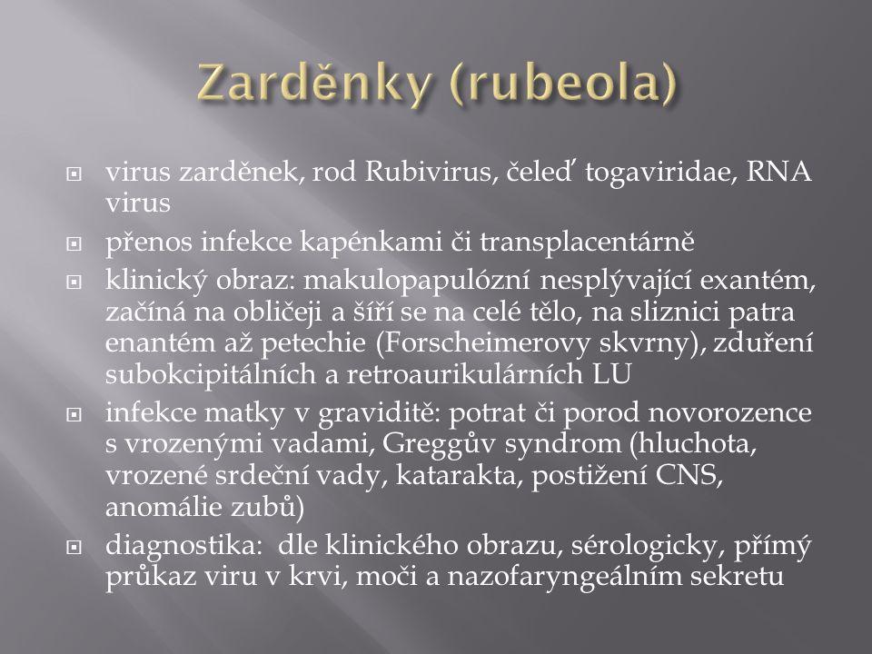 Zarděnky (rubeola) virus zarděnek, rod Rubivirus, čeleď togaviridae, RNA virus. přenos infekce kapénkami či transplacentárně.