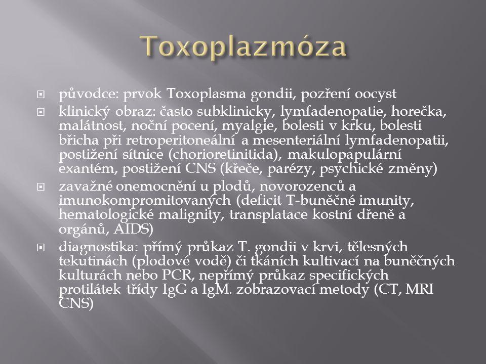 Toxoplazmóza původce: prvok Toxoplasma gondii, pozření oocyst