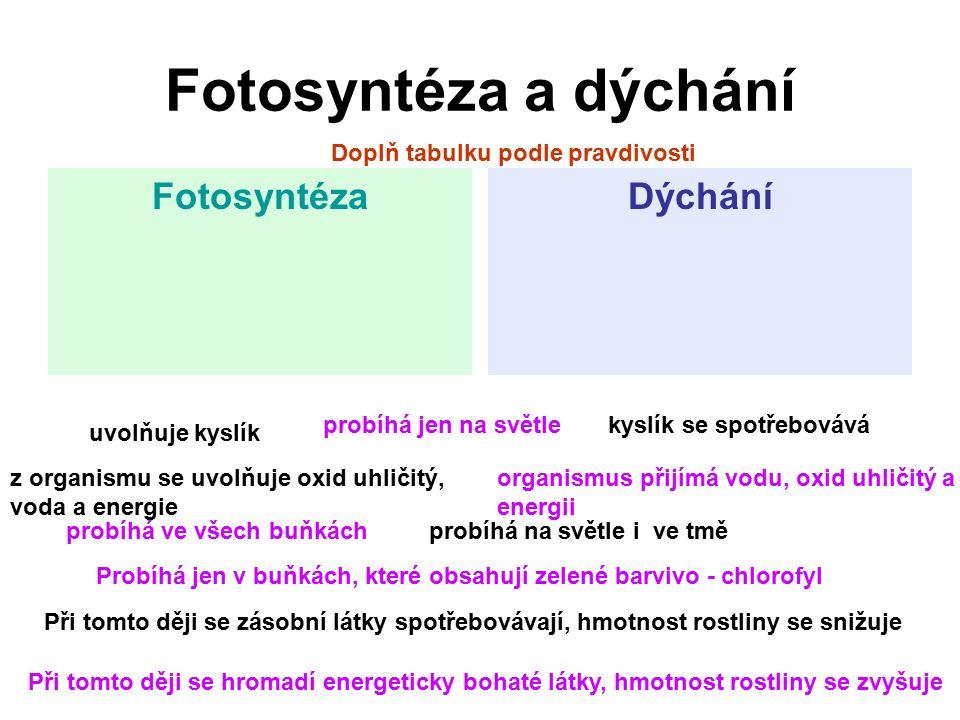Fotosyntéza a dýchání Fotosyntéza Dýchání
