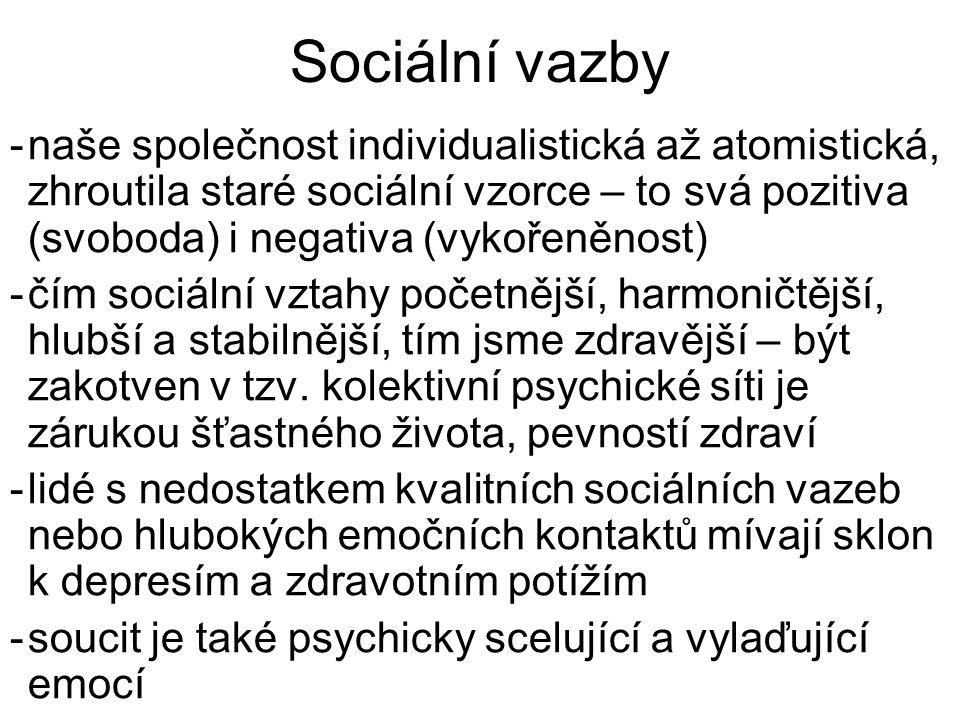 Sociální vazby