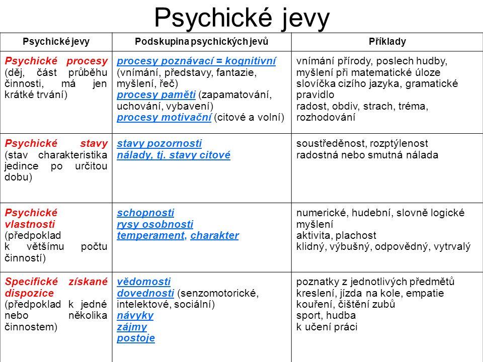 Podskupina psychických jevů
