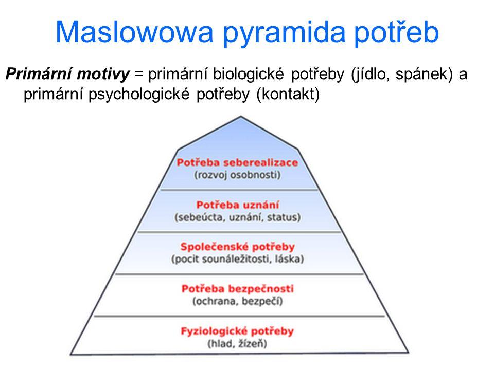 Maslowowa pyramida potřeb