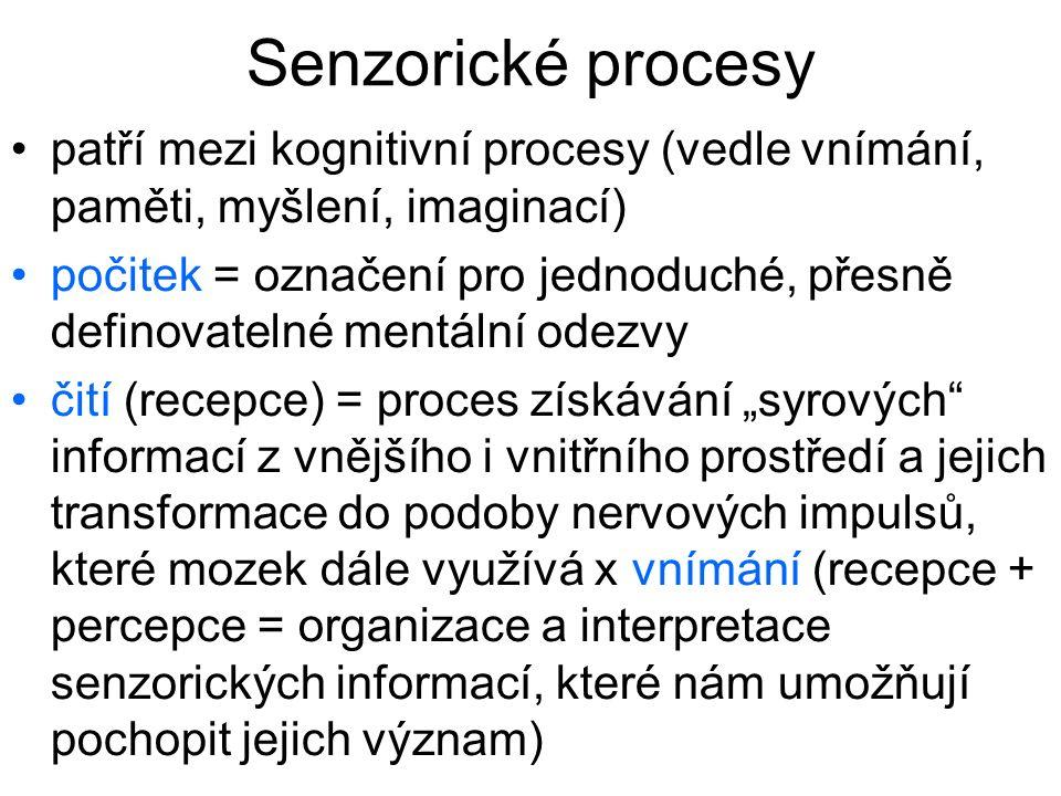 Senzorické procesy patří mezi kognitivní procesy (vedle vnímání, paměti, myšlení, imaginací)