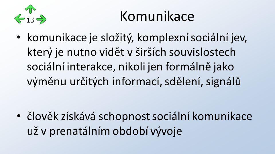 Komunikace 13.