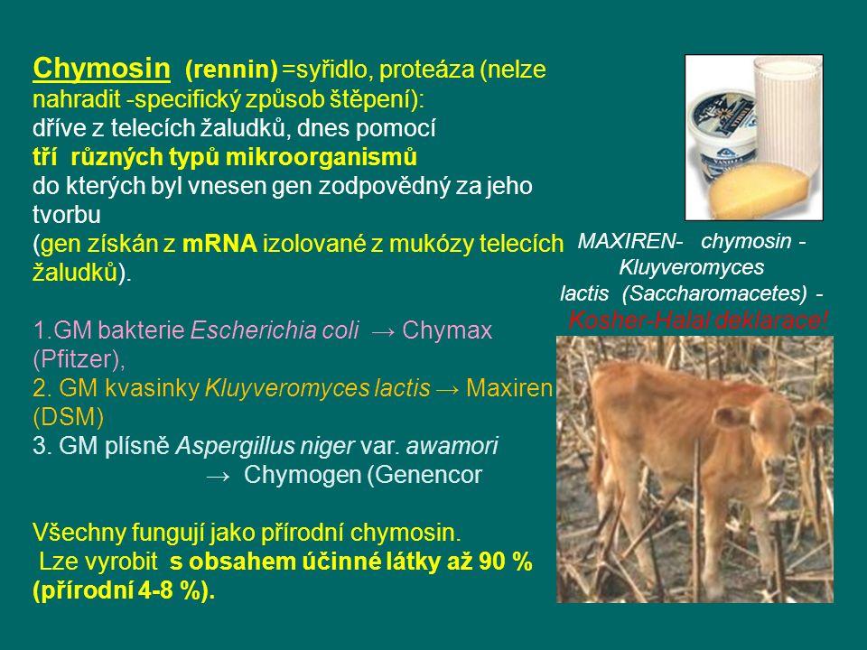Chymosin (rennin) =syřidlo, proteáza (nelze nahradit -specifický způsob štěpení):