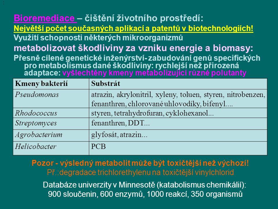 Pozor - výsledný metabolit může být toxičtější než výchozí!