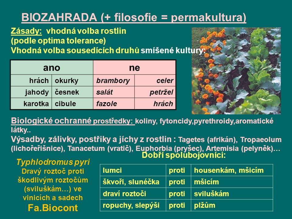 BIOZAHRADA (+ filosofie = permakultura)