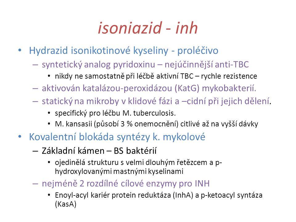 isoniazid - inh Hydrazid isonikotinové kyseliny - proléčivo