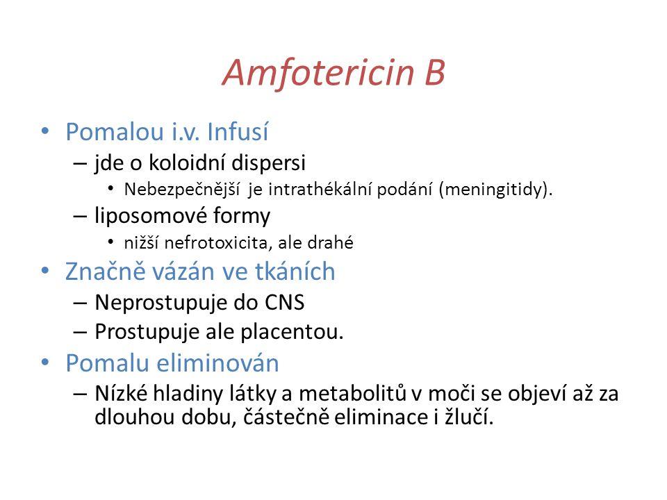 Amfotericin B Pomalou i.v. Infusí Značně vázán ve tkáních