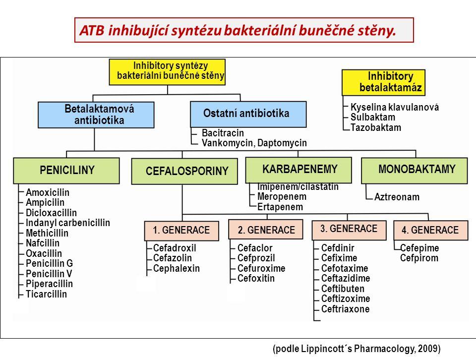 ATB inhibující syntézu bakteriální buněčné stěny.