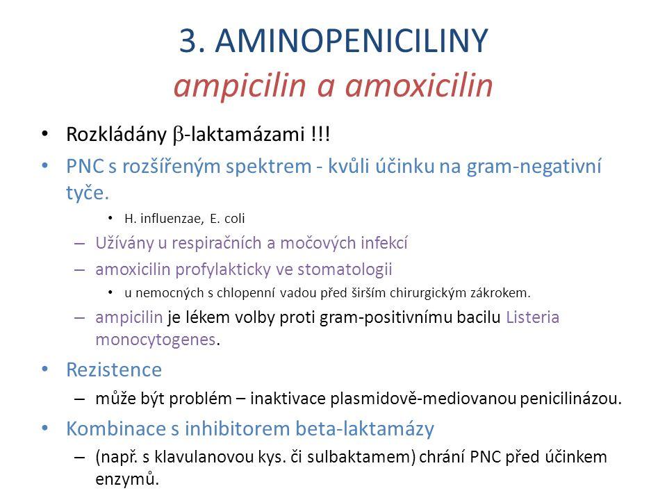 3. AMINOPENICILINY ampicilin a amoxicilin