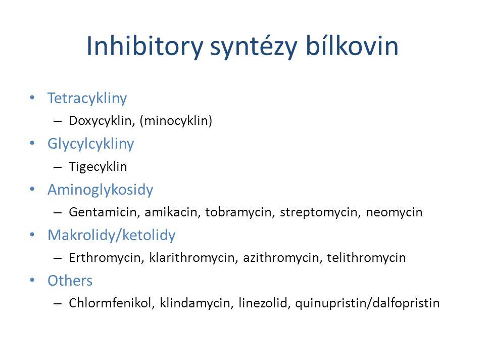 Inhibitory syntézy bílkovin