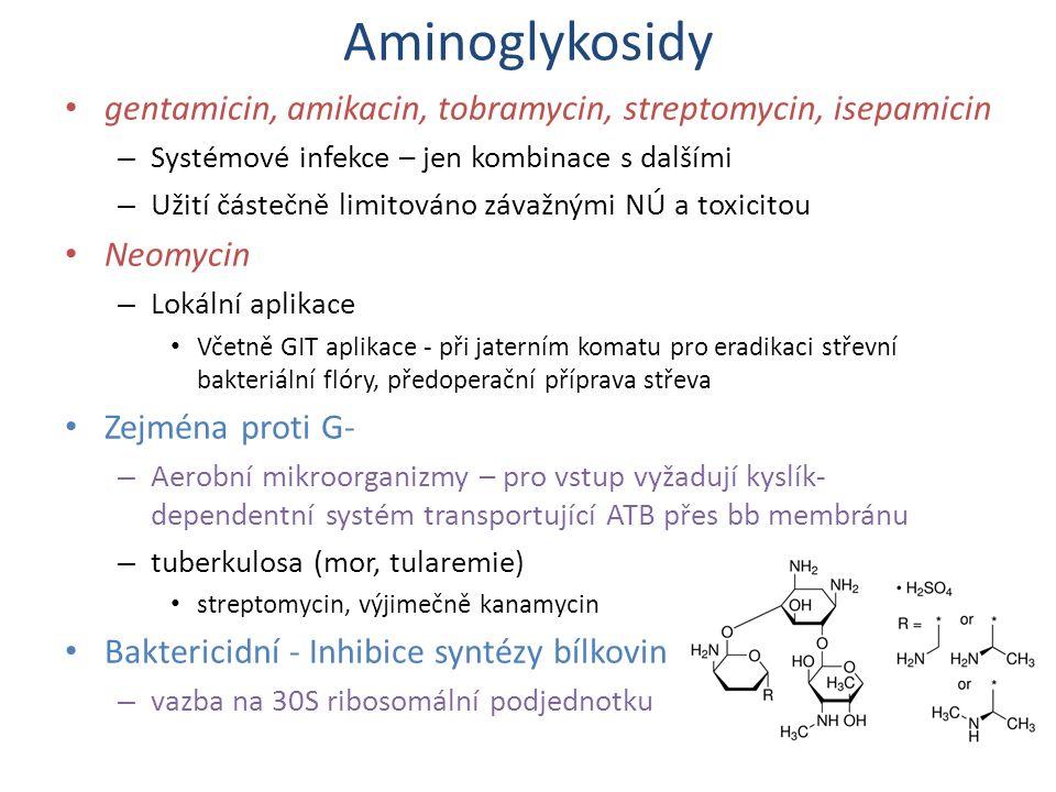 Aminoglykosidy gentamicin, amikacin, tobramycin, streptomycin, isepamicin. Systémové infekce – jen kombinace s dalšími.