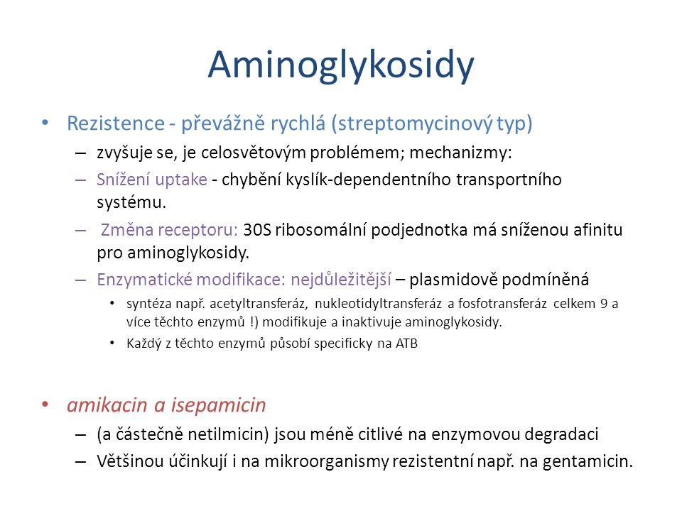 Aminoglykosidy Rezistence - převážně rychlá (streptomycinový typ)