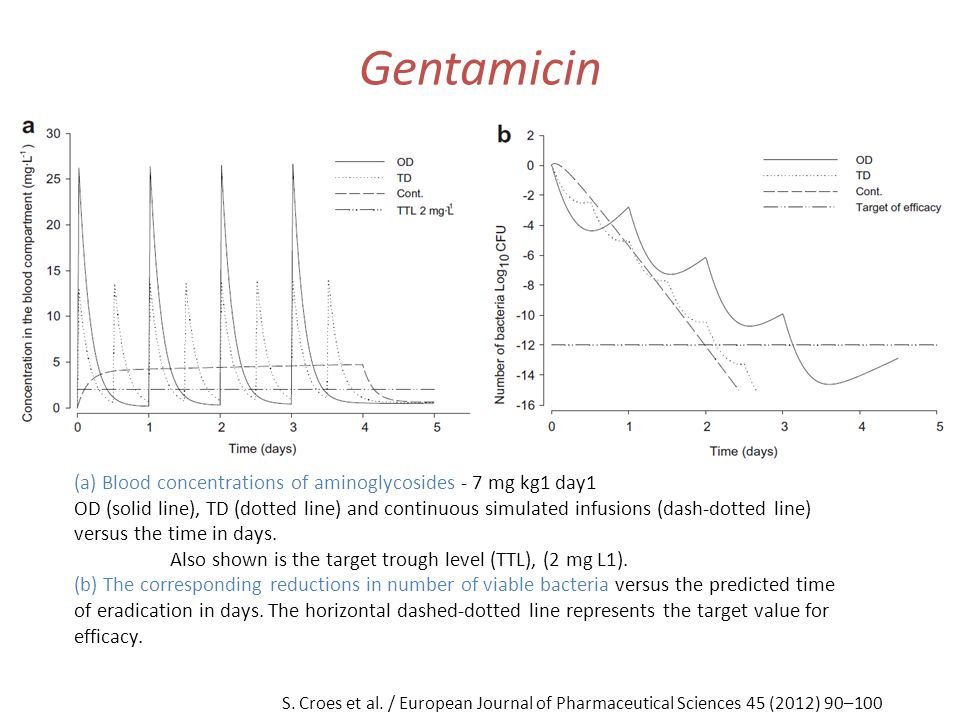 Gentamicin (a) Blood concentrations of aminoglycosides - 7 mg kg1 day1