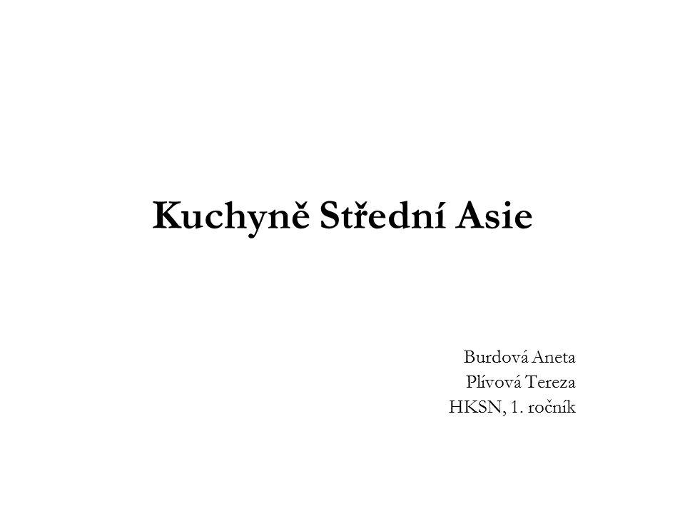 Burdová Aneta Plívová Tereza HKSN, 1. ročník