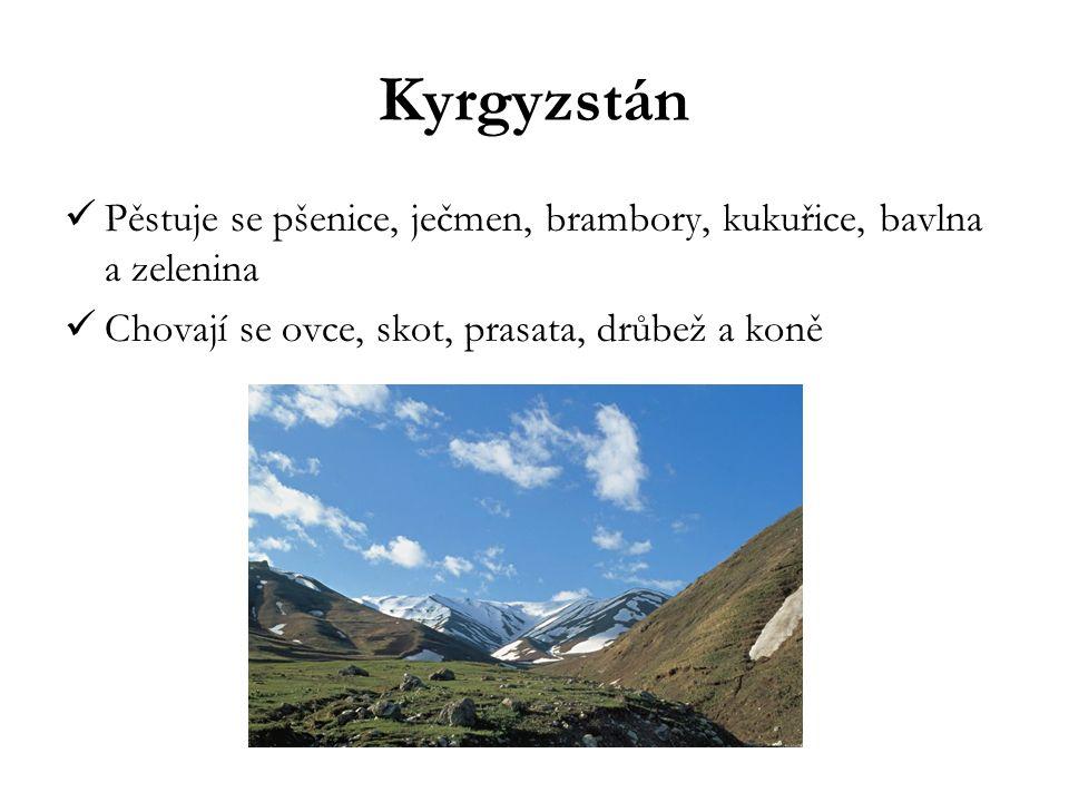 Kyrgyzstán Pěstuje se pšenice, ječmen, brambory, kukuřice, bavlna a zelenina.