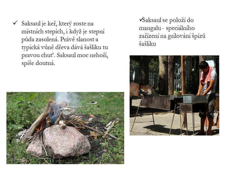 Saksaul je keř, který roste na místních stepích, i když je stepní půda zasolená. Právě slanost a typická vůně dřeva dává šašliku tu pravou chuť. Saksaul moc nehoří, spíše doutná.