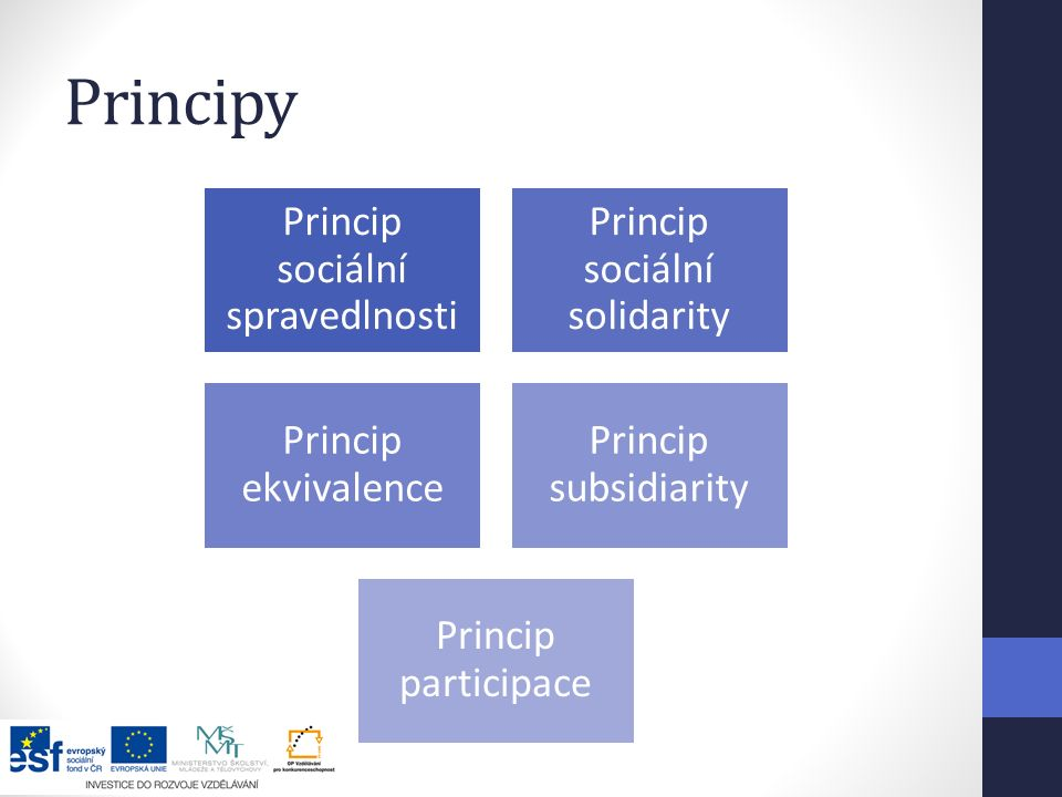 Principy Princip sociální spravedlnosti Princip sociální solidarity