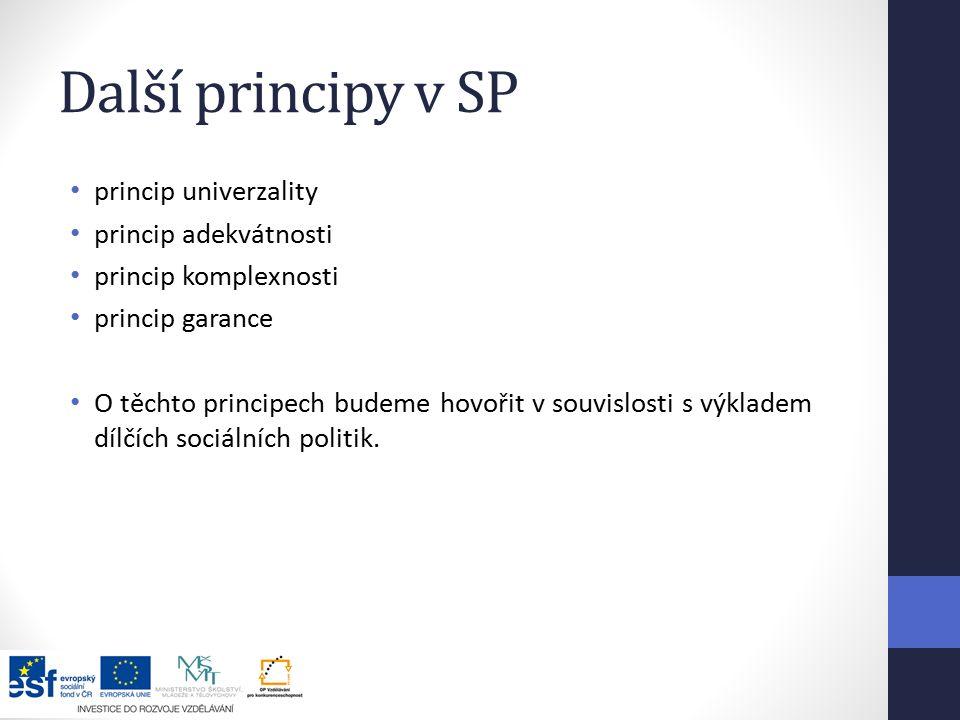 Další principy v SP princip univerzality princip adekvátnosti