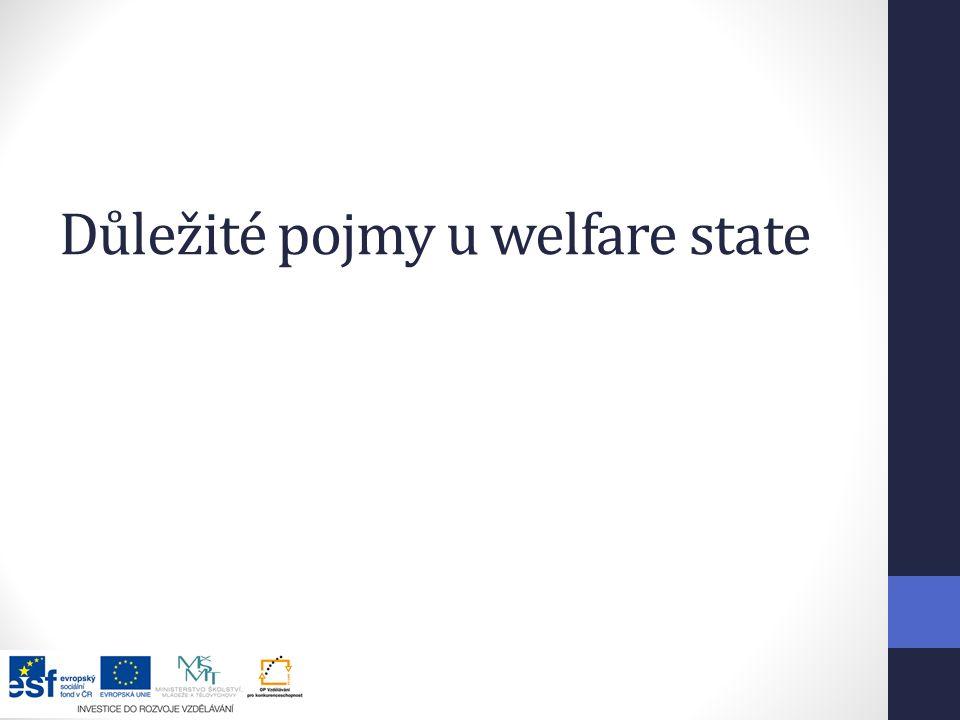 Důležité pojmy u welfare state