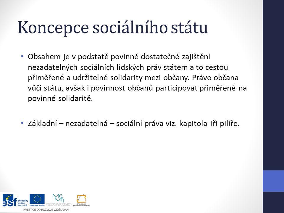 Koncepce sociálního státu