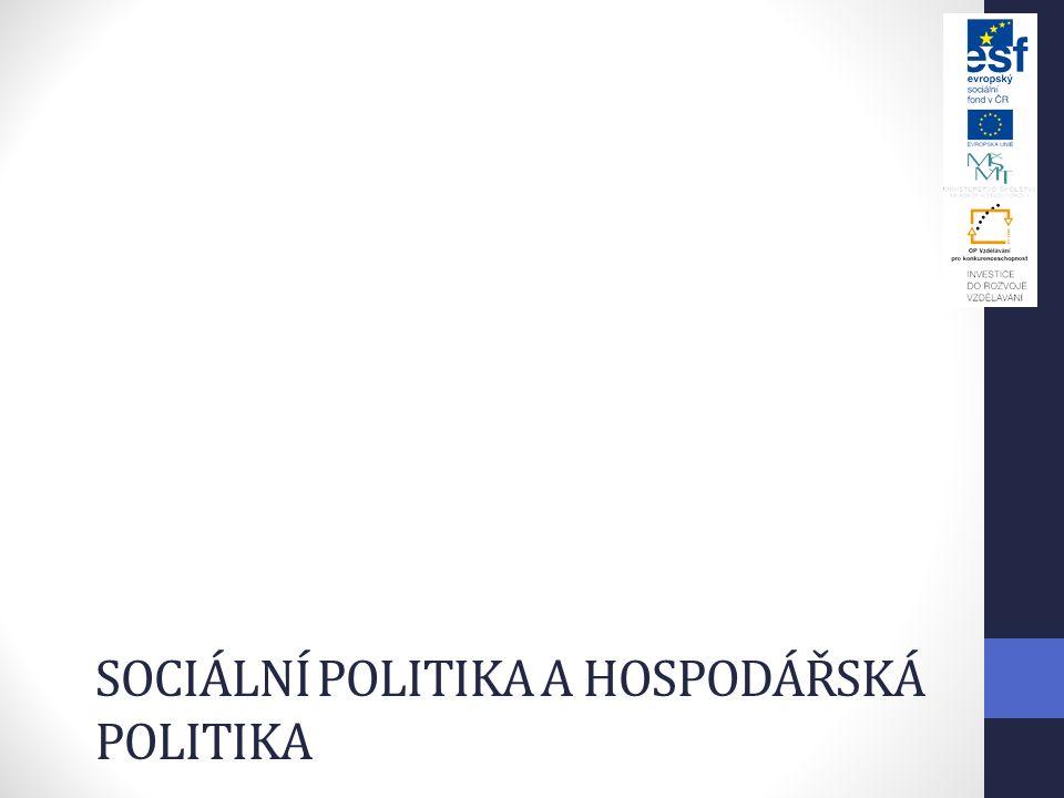 Sociální politika a hospodářská politika
