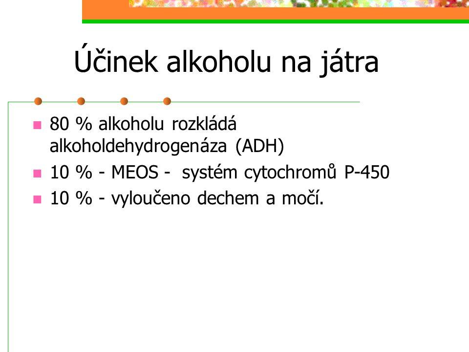 Účinek alkoholu na játra