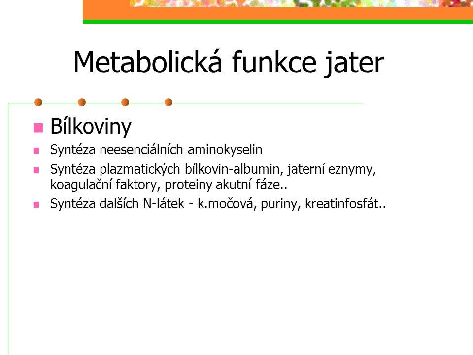 Metabolická funkce jater