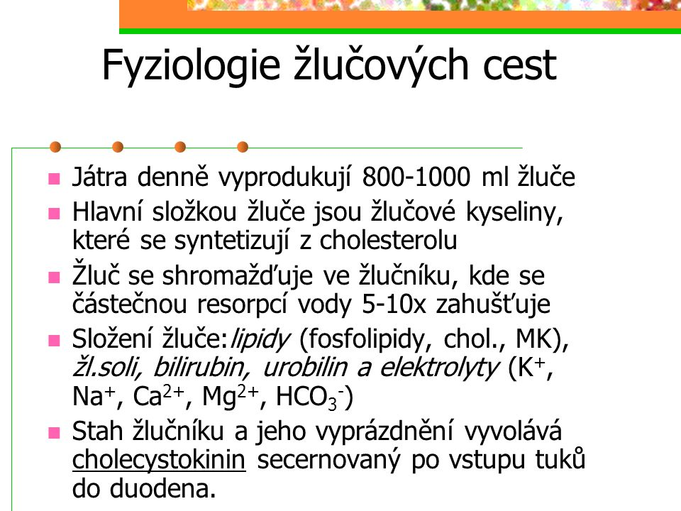 Fyziologie žlučových cest