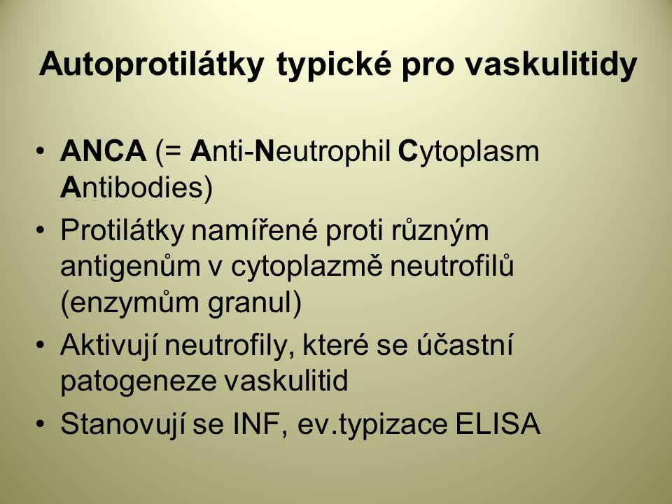 Autoprotilátky typické pro vaskulitidy