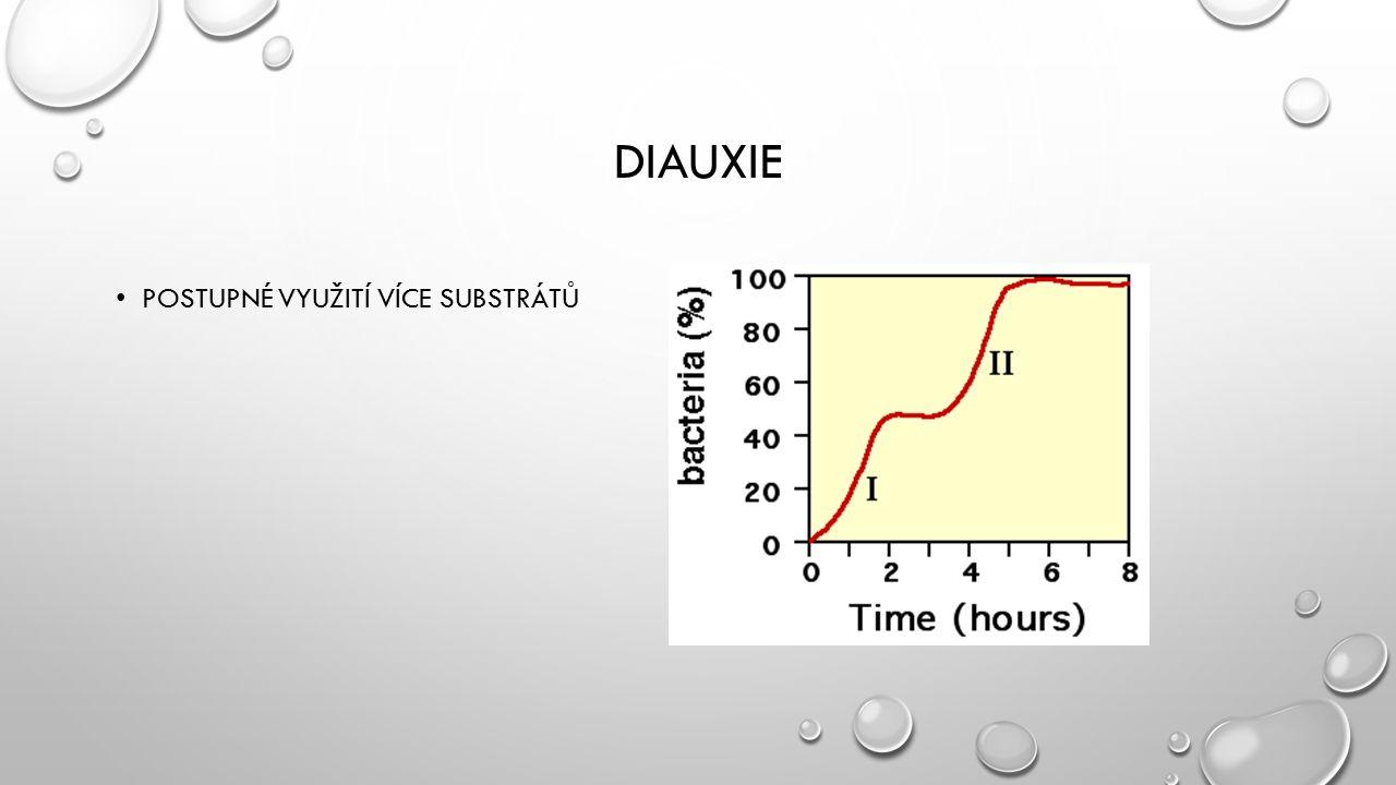 Diauxie Postupné využití více substrátů