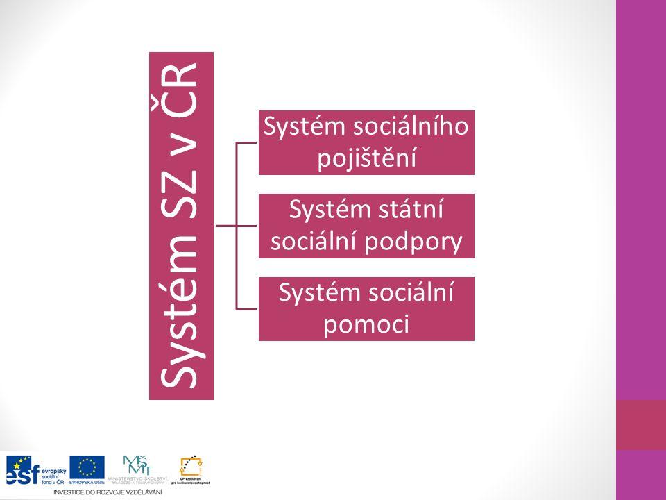 Systém sociálního pojištění Systém státní sociální podpory