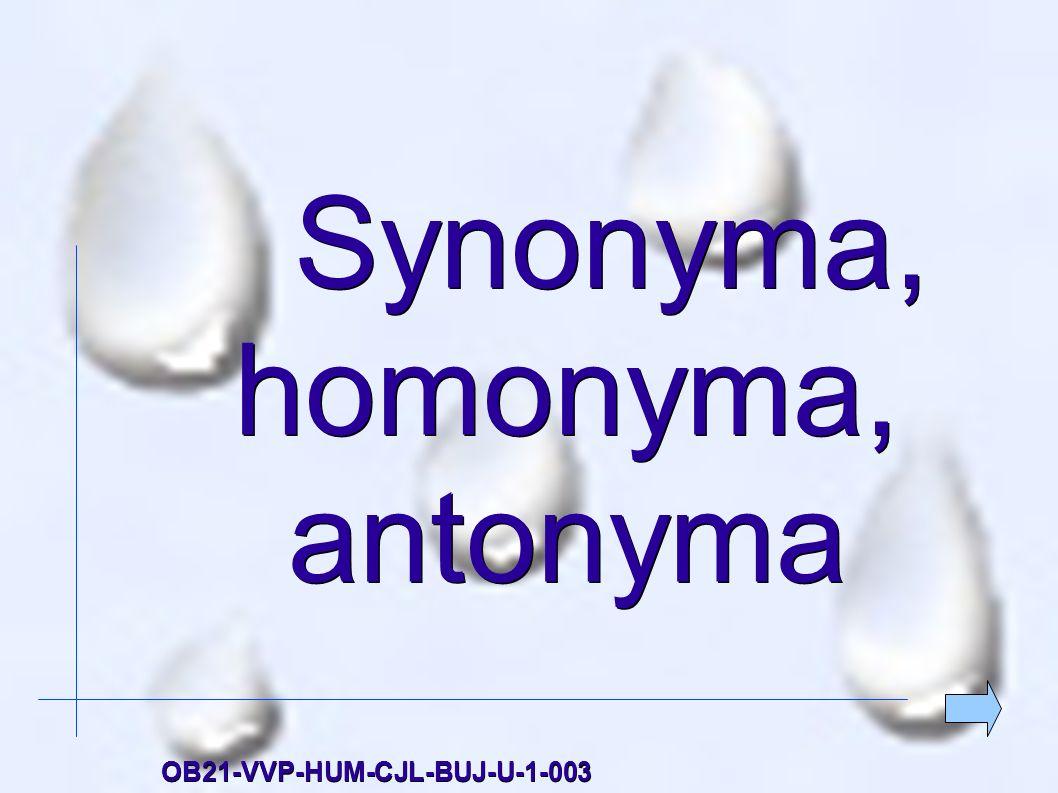 Synonyma, homonyma, antonyma