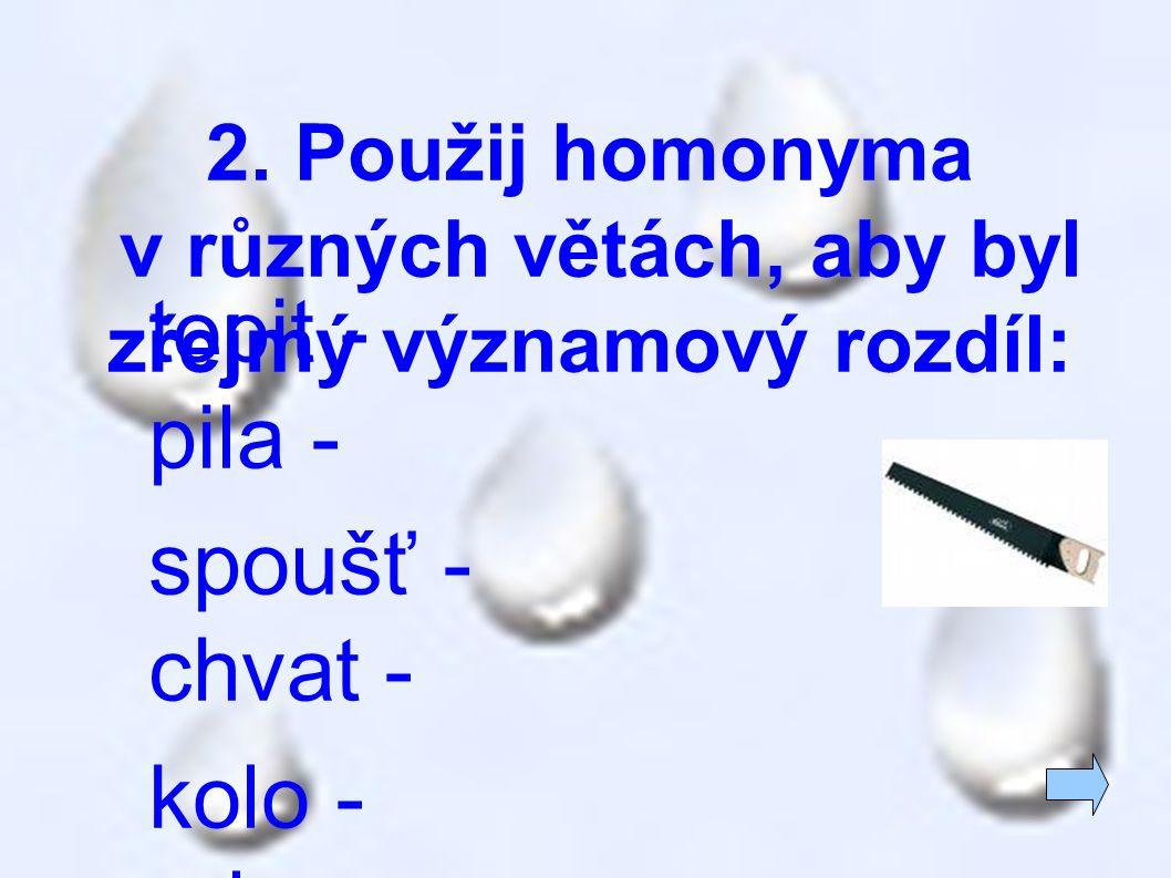 2. Použij homonyma v různých větách, aby byl zřejmý významový rozdíl: