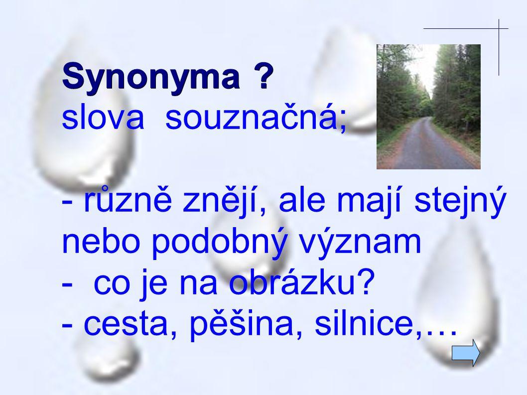 Synonyma slova souznačná; - různě znějí, ale mají stejný nebo podobný význam. - co je na obrázku
