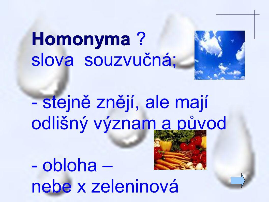 Homonyma . slova souzvučná; - stejně znějí, ale mají odlišný význam a původ.