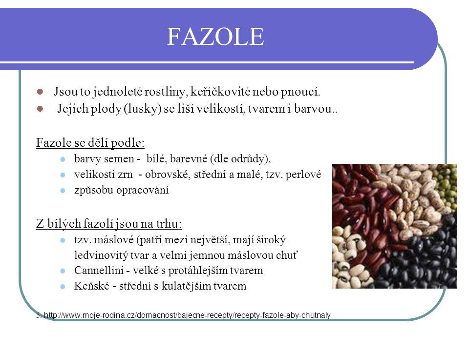 FAZOLE Jsou to jednoleté rostliny, keříčkovité nebo pnoucí.