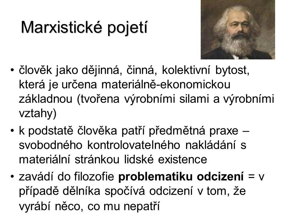 Marxistické pojetí