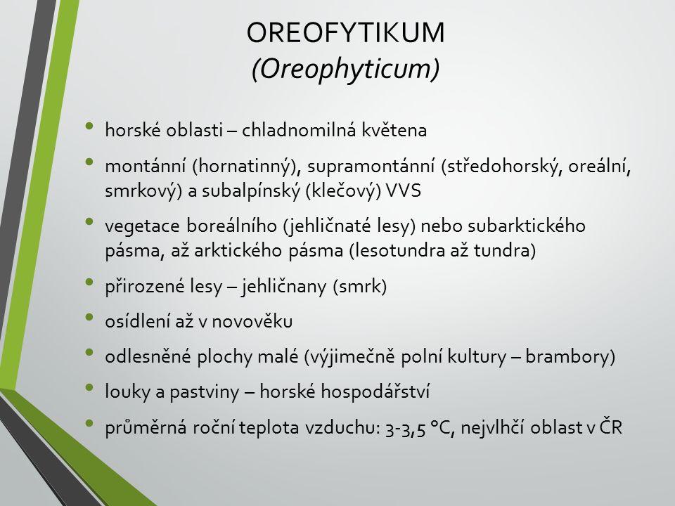 OREOFYTIKUM (Oreophyticum)