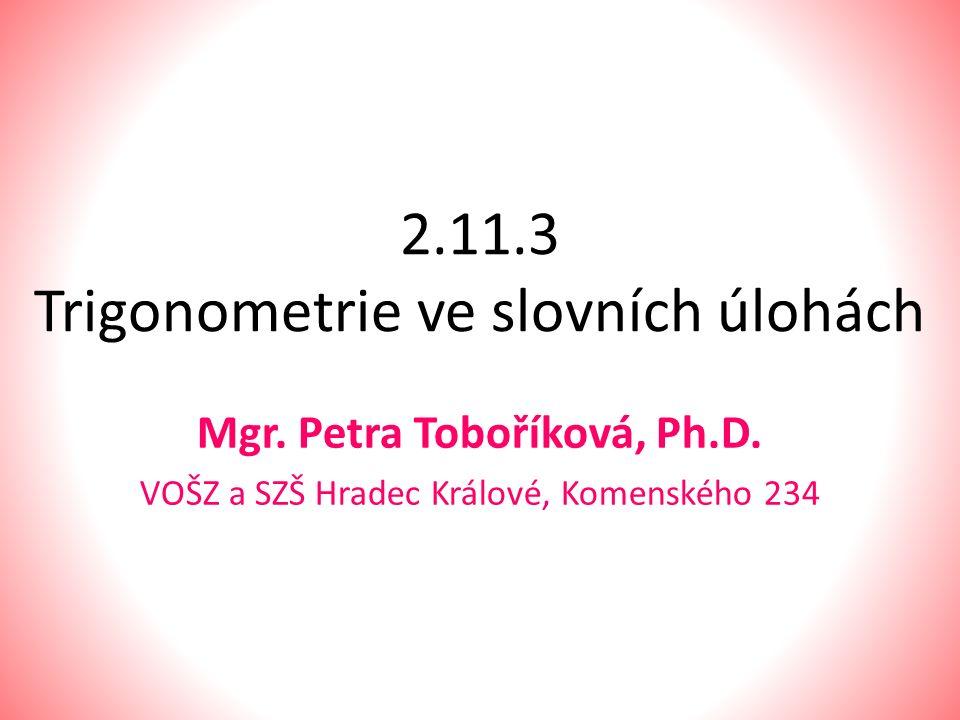 2.11.3 Trigonometrie ve slovních úlohách