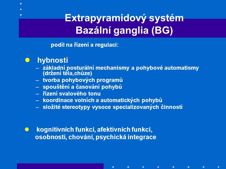 Extrapyramidový systém Bazální ganglia (BG)