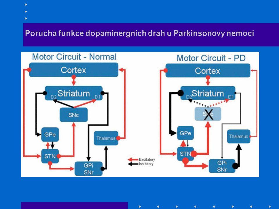 Porucha funkce dopaminergních drah u Parkinsonovy nemoci