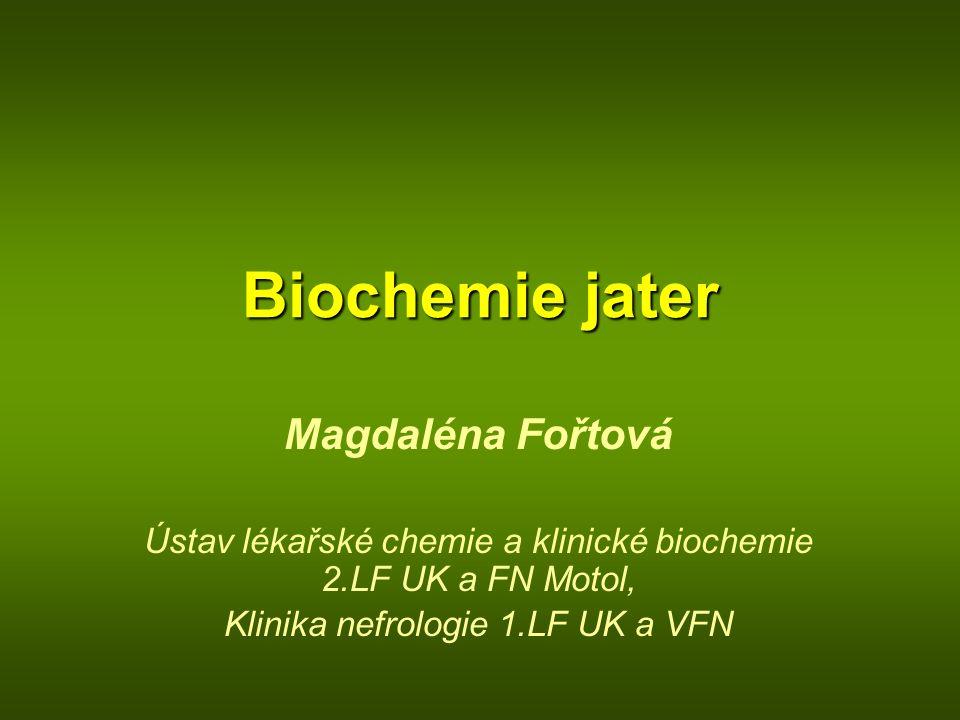 Biochemie jater Magdaléna Fořtová
