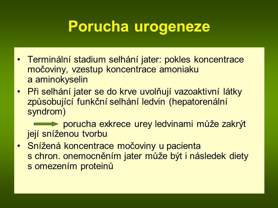 Porucha urogeneze