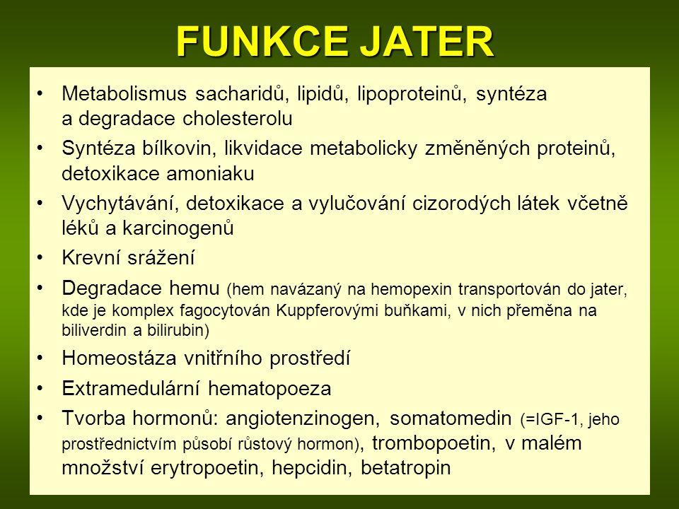 FUNKCE JATER Metabolismus sacharidů, lipidů, lipoproteinů, syntéza a degradace cholesterolu.